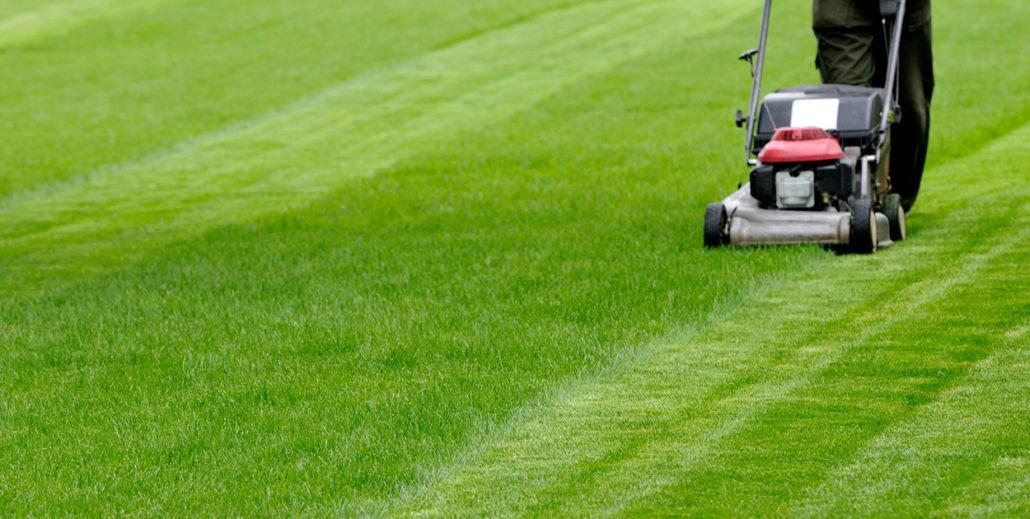 Best Tips For Commercial Landscape Maintenance Services