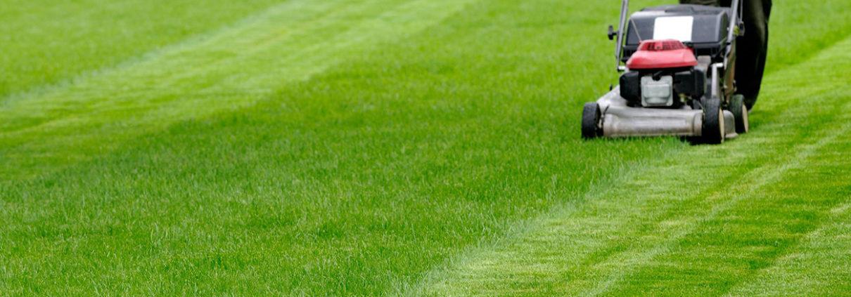 Best Tips For Commercial Landscape Maintenance Services - Best Tips For Commercial Landscape Maintenance Services - Perfect